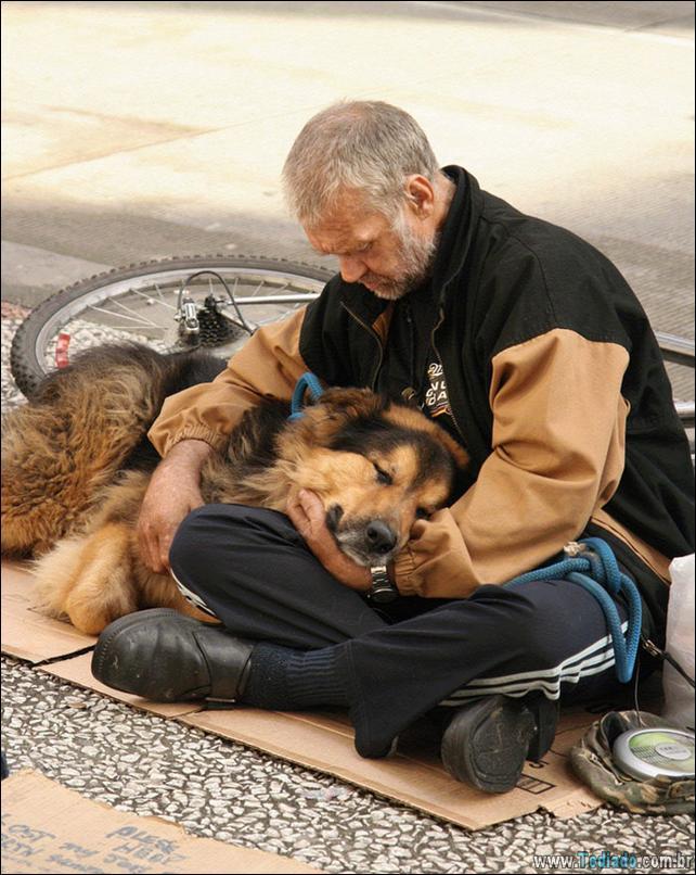 morador-de-rua-e-seus-cachorros-06