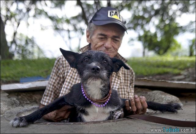 morador-de-rua-e-seus-cachorros-08