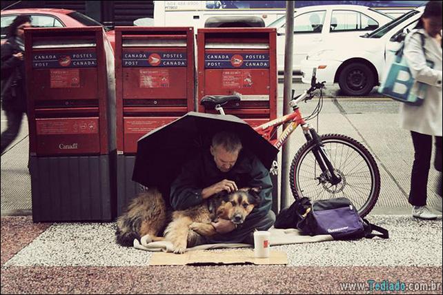morador-de-rua-e-seus-cachorros-14