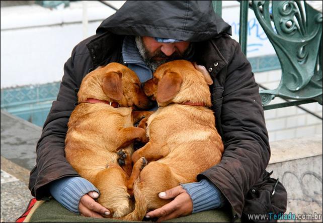 morador-de-rua-e-seus-cachorros-15