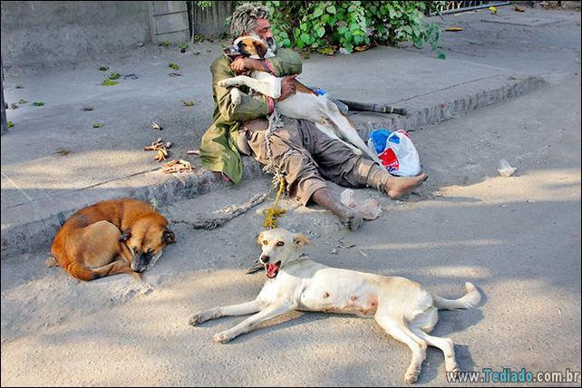 morador-de-rua-e-seus-cachorros-19