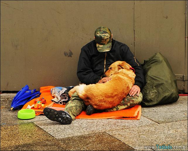 morador-de-rua-e-seus-cachorros-25