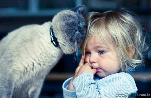 motivos-filhos-precisam-animal-estimacao-04