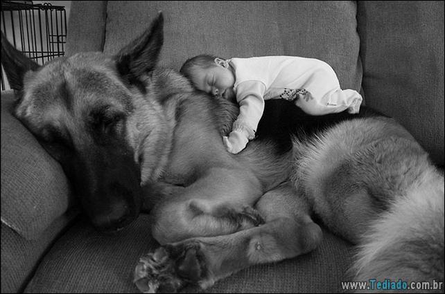 motivos-filhos-precisam-animal-estimacao-07