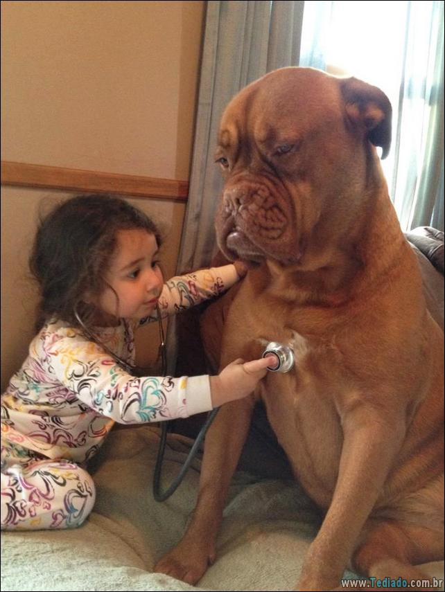 motivos-filhos-precisam-animal-estimacao-09