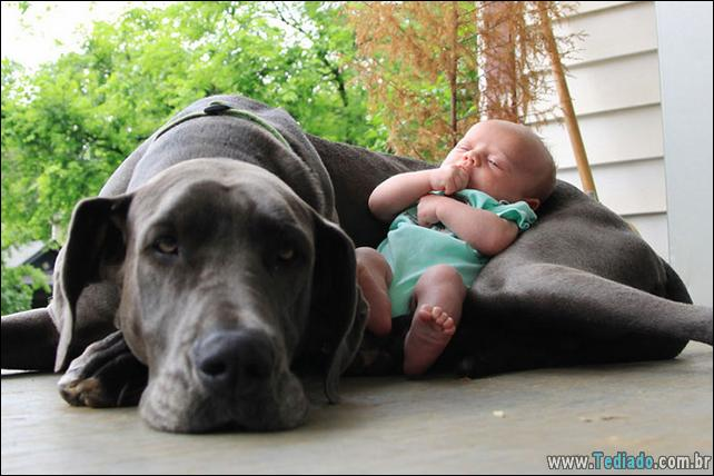 motivos-filhos-precisam-animal-estimacao-12