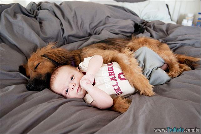 motivos-filhos-precisam-animal-estimacao-15
