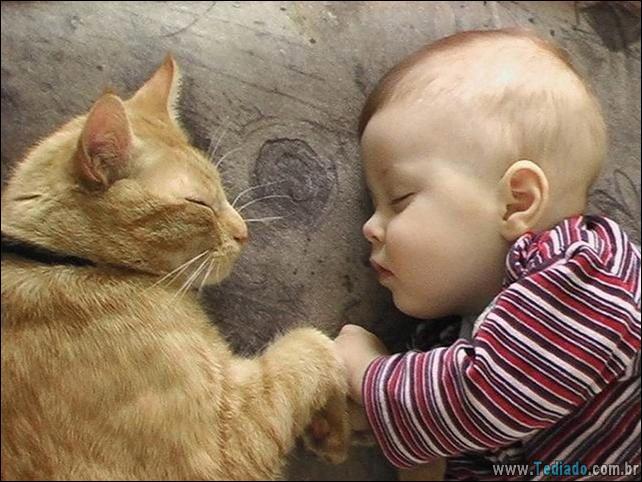 motivos-filhos-precisam-animal-estimacao-18