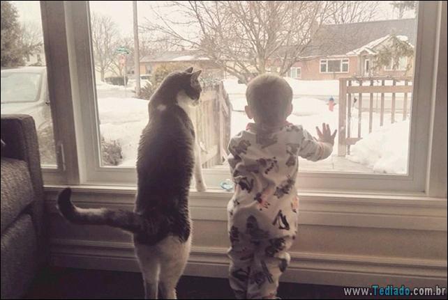 motivos-filhos-precisam-animal-estimacao-20