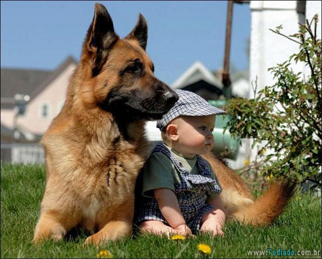 motivos-filhos-precisam-animal-estimacao-26