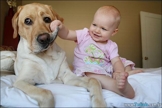 motivos-filhos-precisam-animal-estimacao-31