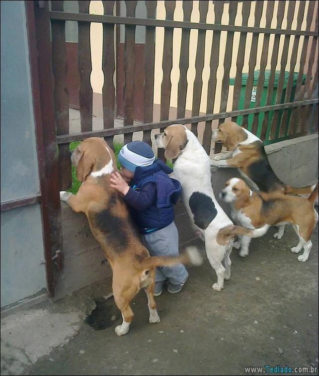 motivos-filhos-precisam-animal-estimacao-34