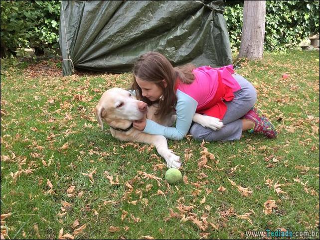 motivos-filhos-precisam-animal-estimacao-35