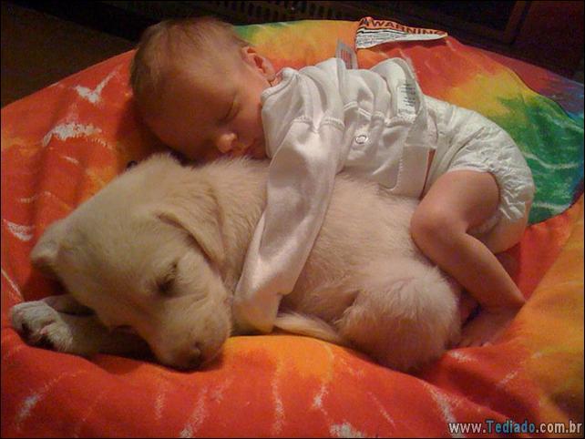 motivos-filhos-precisam-animal-estimacao-36