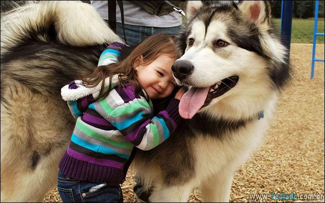 motivos-filhos-precisam-animal-estimacao-41