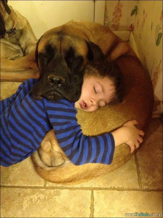 motivos-filhos-precisam-animal-estimacao-42