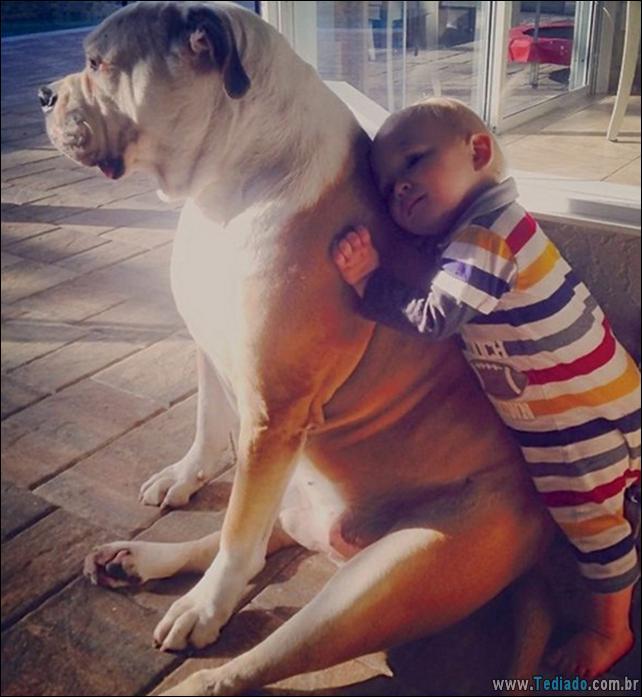 motivos-filhos-precisam-animal-estimacao-47