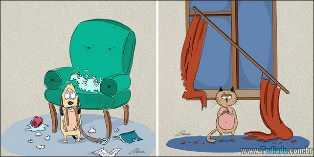 6-diferenças-de-gatos-e-cachorro-05