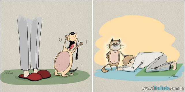 6-diferenças-de-gatos-e-cachorro-06