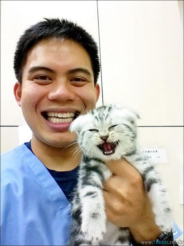 hospital-de-animais-19