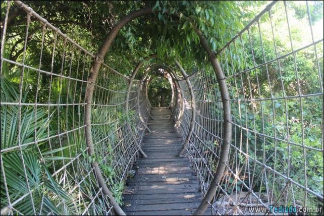 pontes-fabulosas-18