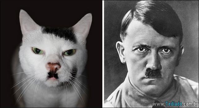animais-que-e-semelhantes-com-celebridades-12