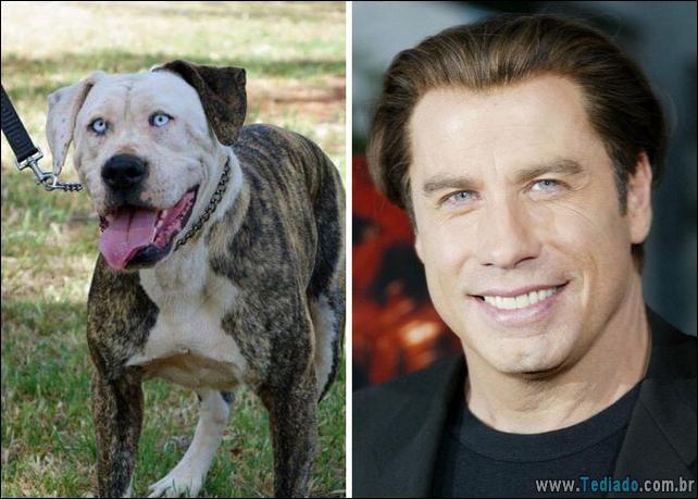 animais-que-e-semelhantes-com-celebridades-32