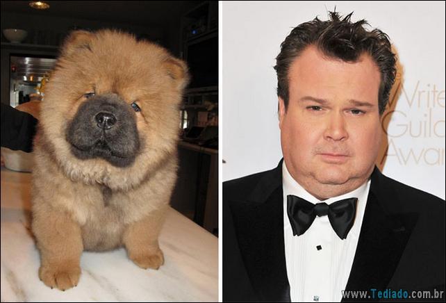 animais-que-e-semelhantes-com-celebridades-35