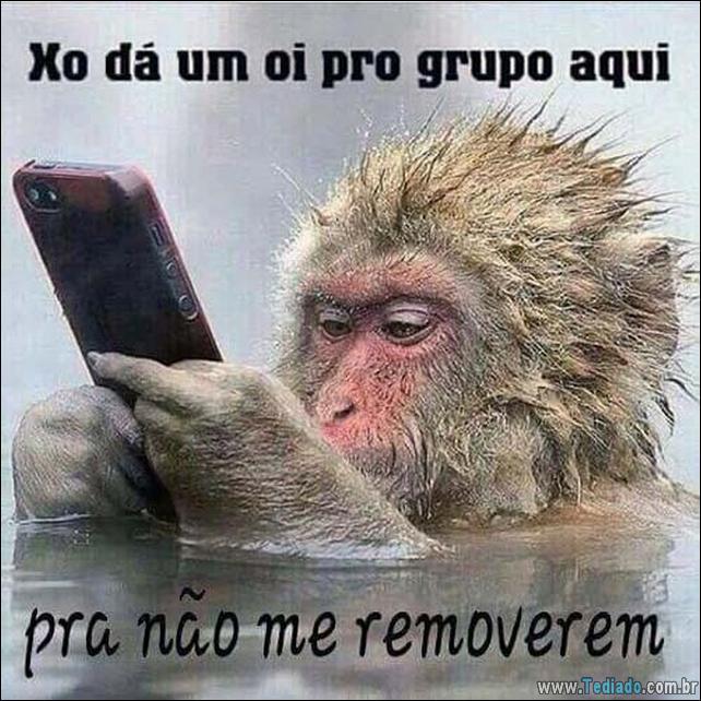 imagens-para-whatsapp-14