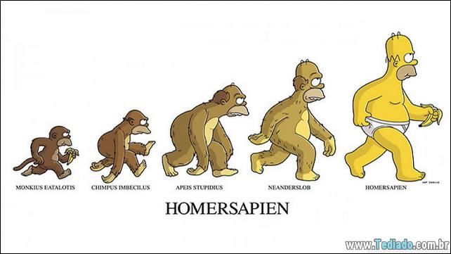 satirical-cartoons-da-evolucao-13