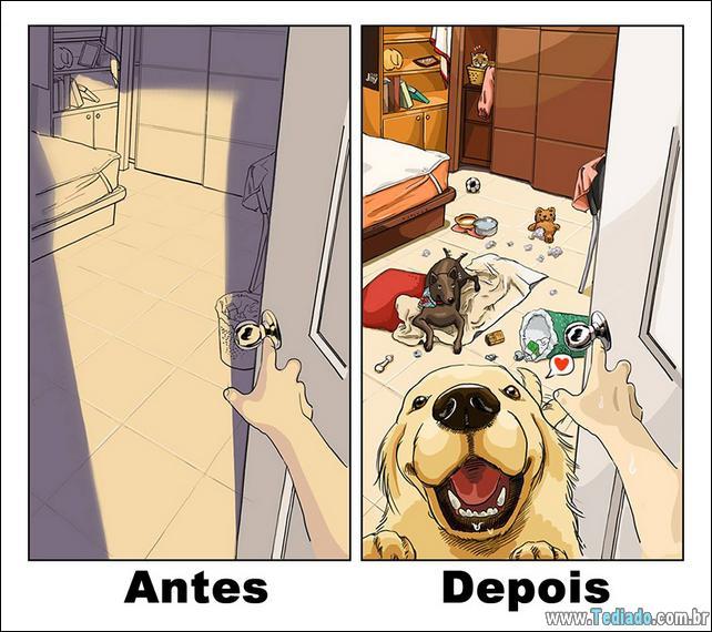 vida-antes-e-depois-de-ter-um-cachorro-01
