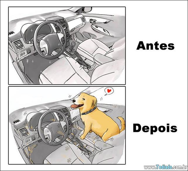 vida-antes-e-depois-de-ter-um-cachorro-02
