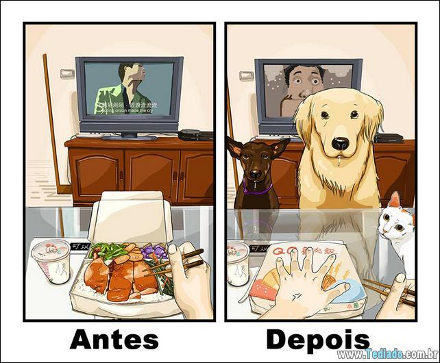 8 exemplo de vida antes e depois de ter um cachorro 31