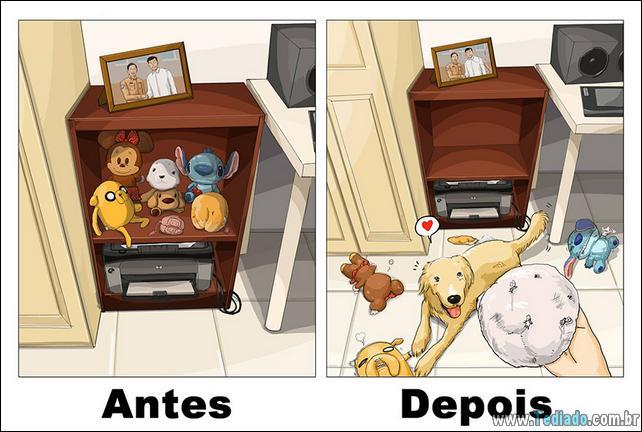 vida-antes-e-depois-de-ter-um-cachorro-07