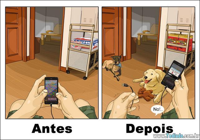 vida-antes-e-depois-de-ter-um-cachorro-08