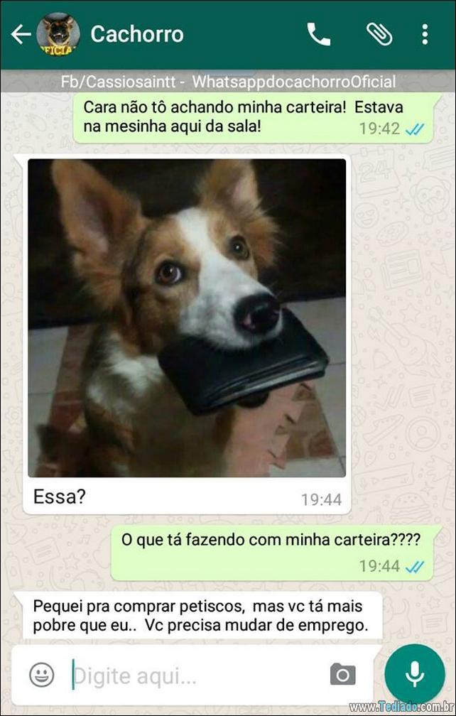 conversar-com-cachorro-01