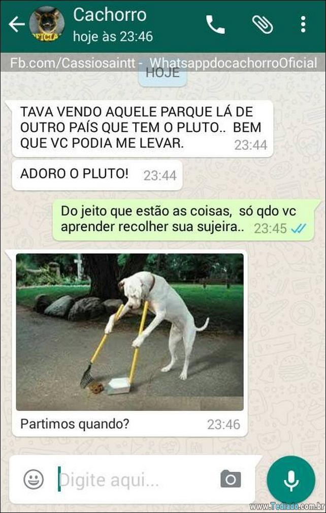 conversar-com-cachorro-04