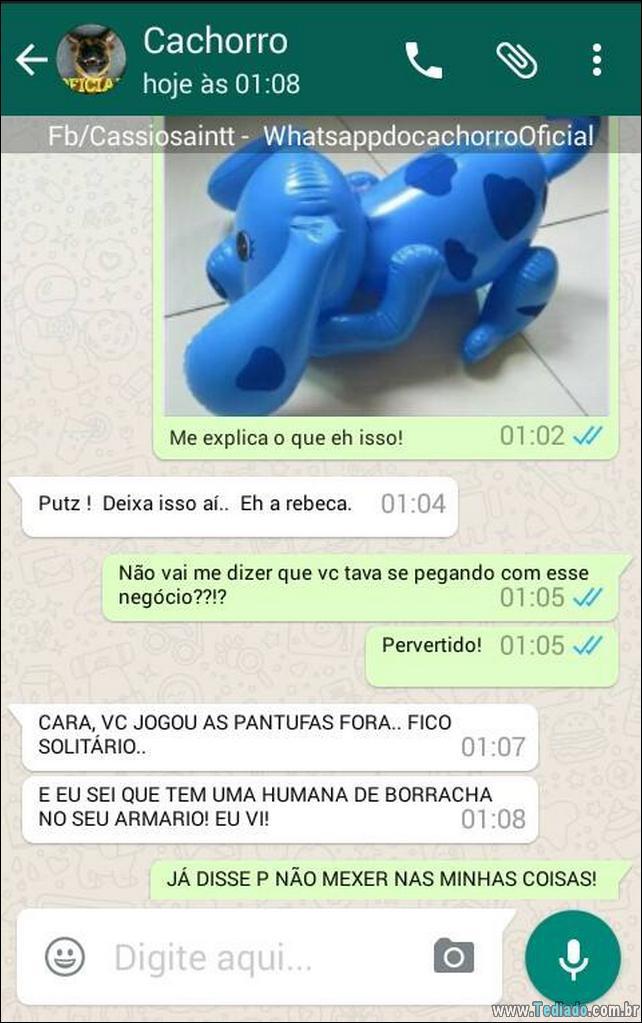 conversar-com-cachorro-08
