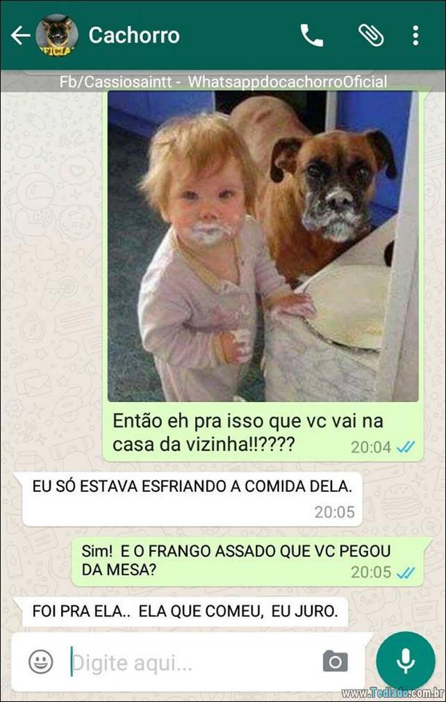 conversar-com-cachorro-19