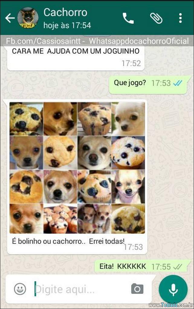 conversar-com-cachorro-20