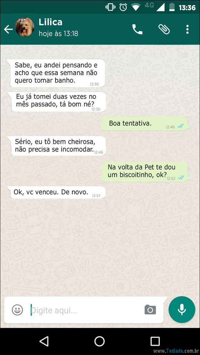 conversar-whatsapp-cachorro-05