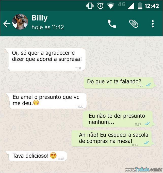 conversar-whatsapp-cachorro-08