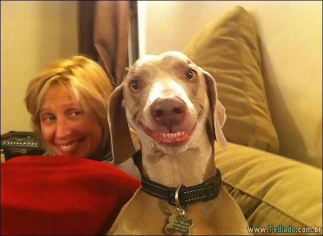 animais-sorrindo-14