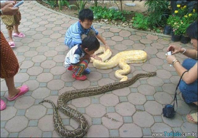 fotos-estranhas-da-tailandia-11