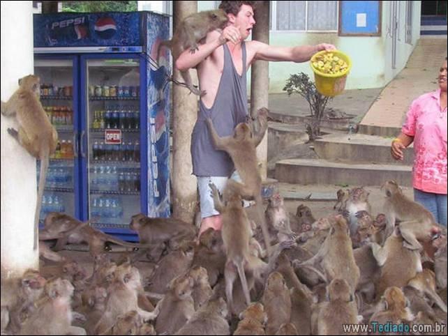 fotos-estranhas-da-tailandia-14