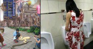 tailandia-estranho