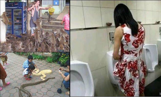 18 fotos estranhas de Tailândia 3