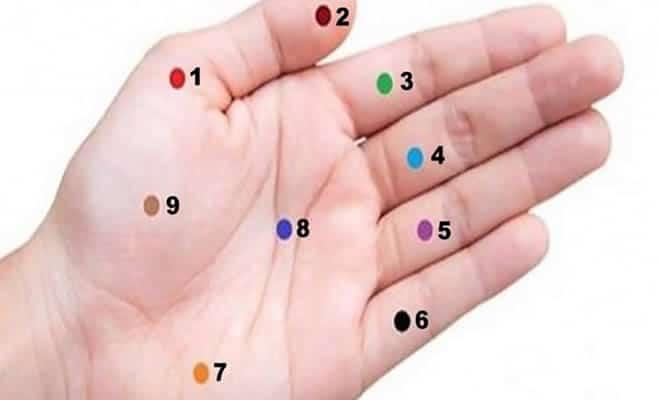 9 pontos da mão que vai mudar sua vida 2
