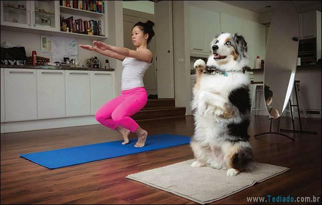 animais-que-faz-yoga-25