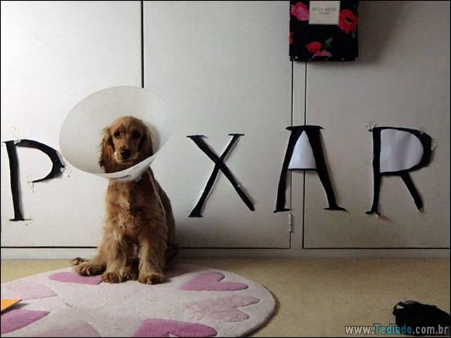 cachorros-e-suas-ideias-malucas-11